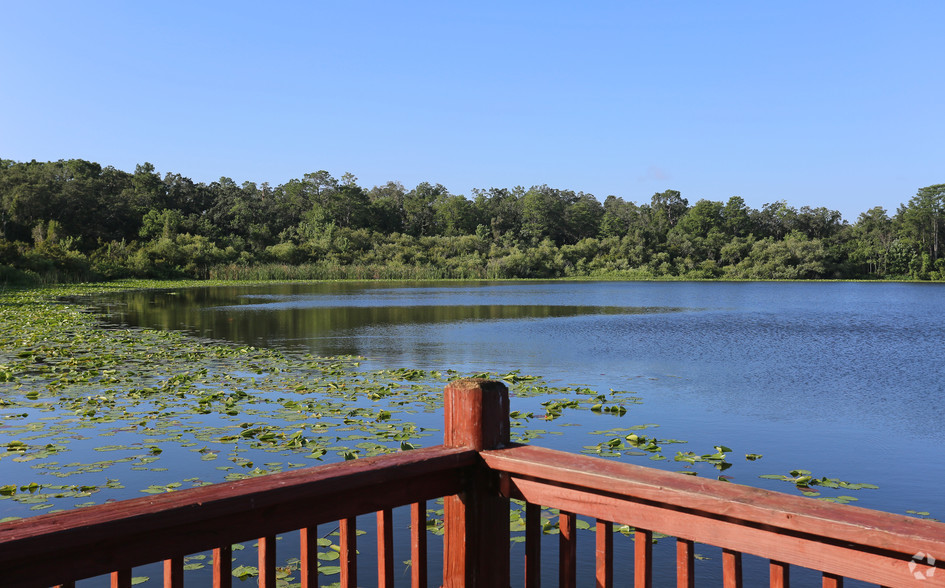outdoor patio lake view at The Beverly Apartments Orlando